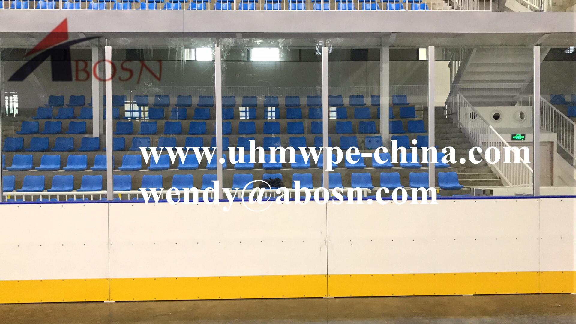 Hockey Dasher Board with Acrylic Shielding