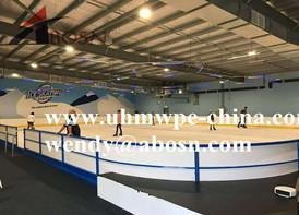 Hockey Dasher Board in Australia
