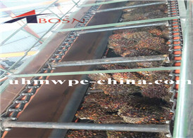 UHMWPE Liner in Palm Oil Mill